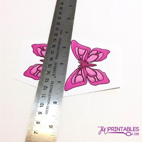 sophia butterfly6