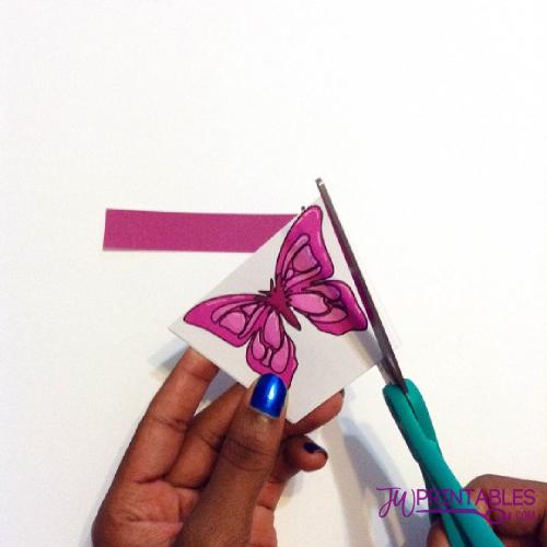 sophia butterfly9